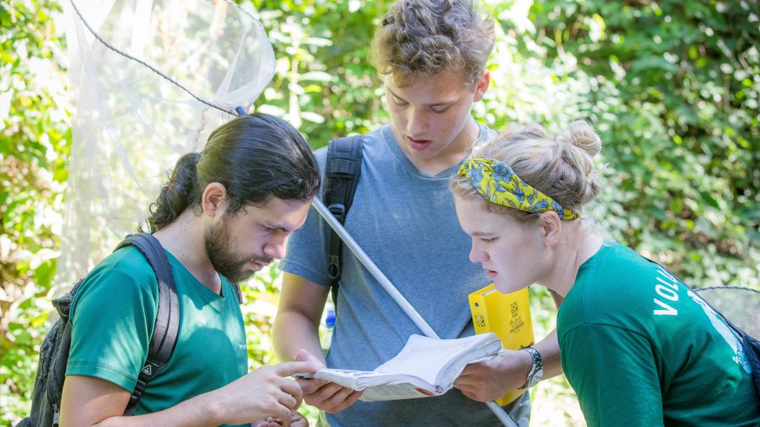 Projects Abroad staff on a volunteer travel program for adults in Costa Rica help volunteers identify butterflies.